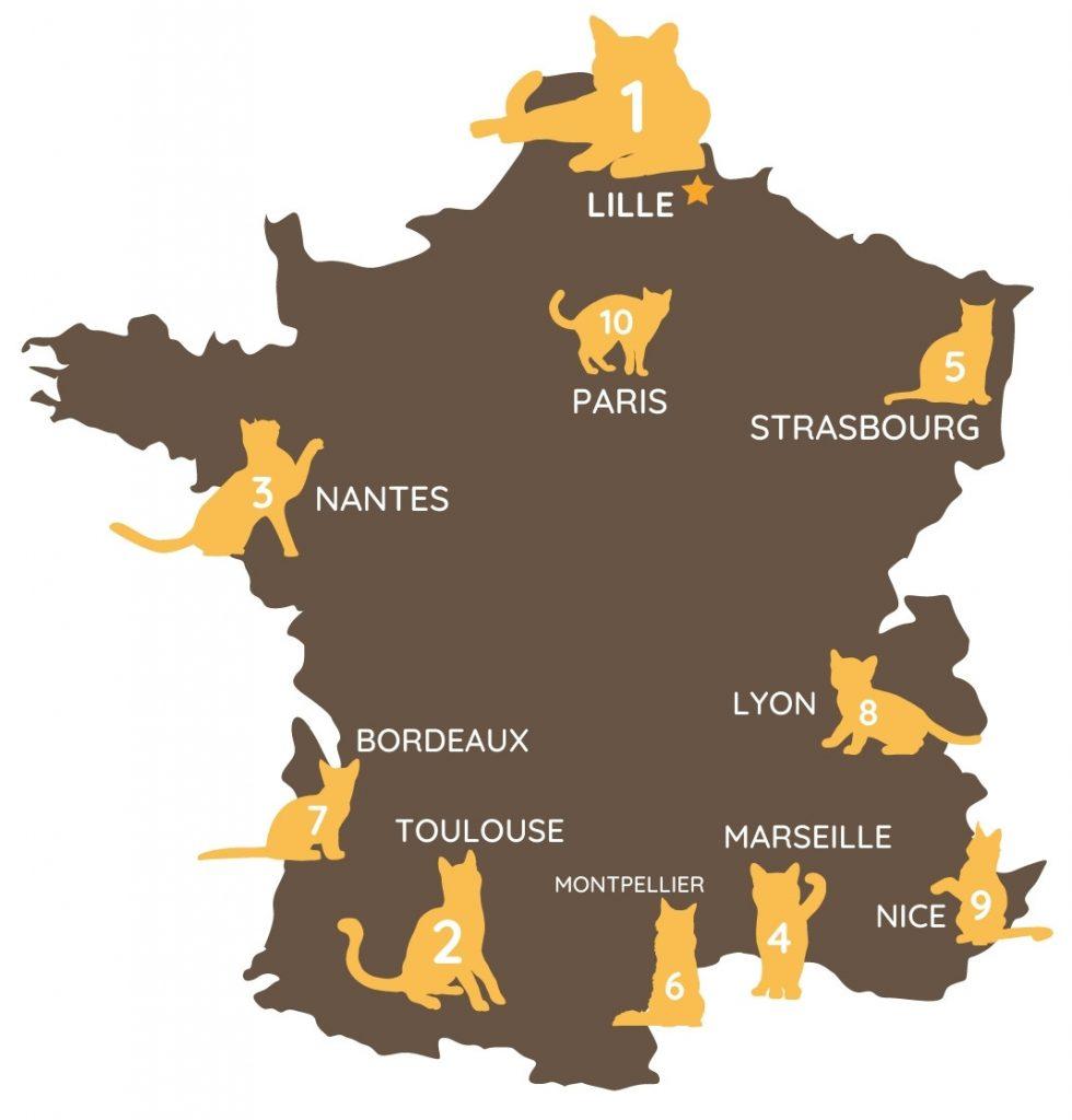 Classement des grandes villes de France selon le coût vétérinaire moyen pour chats du moins élevé au plus élevé